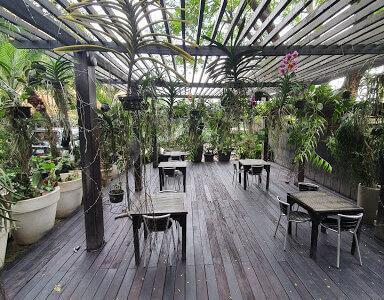 Orchid Bistro Restaurant